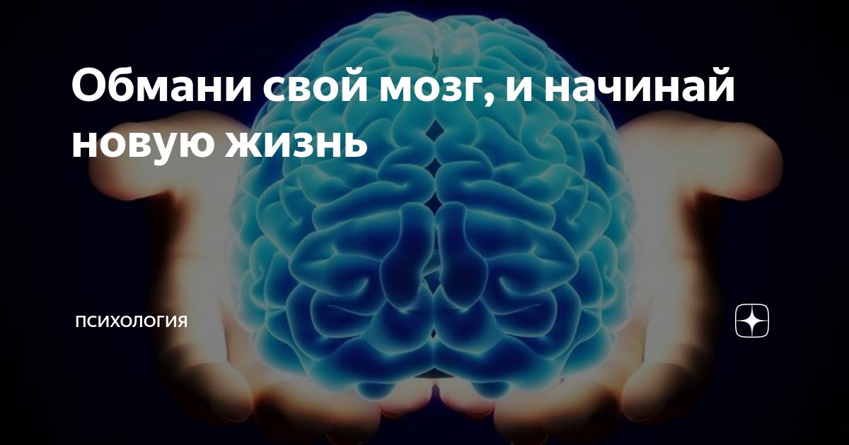Серый кардинал: как мозг обманывает тебя каждый день | brodude.ru