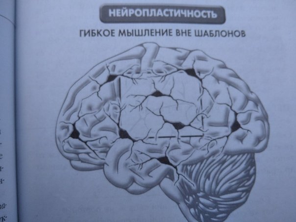 Как обмануть свой мозг, чтобы быстрее похудеть