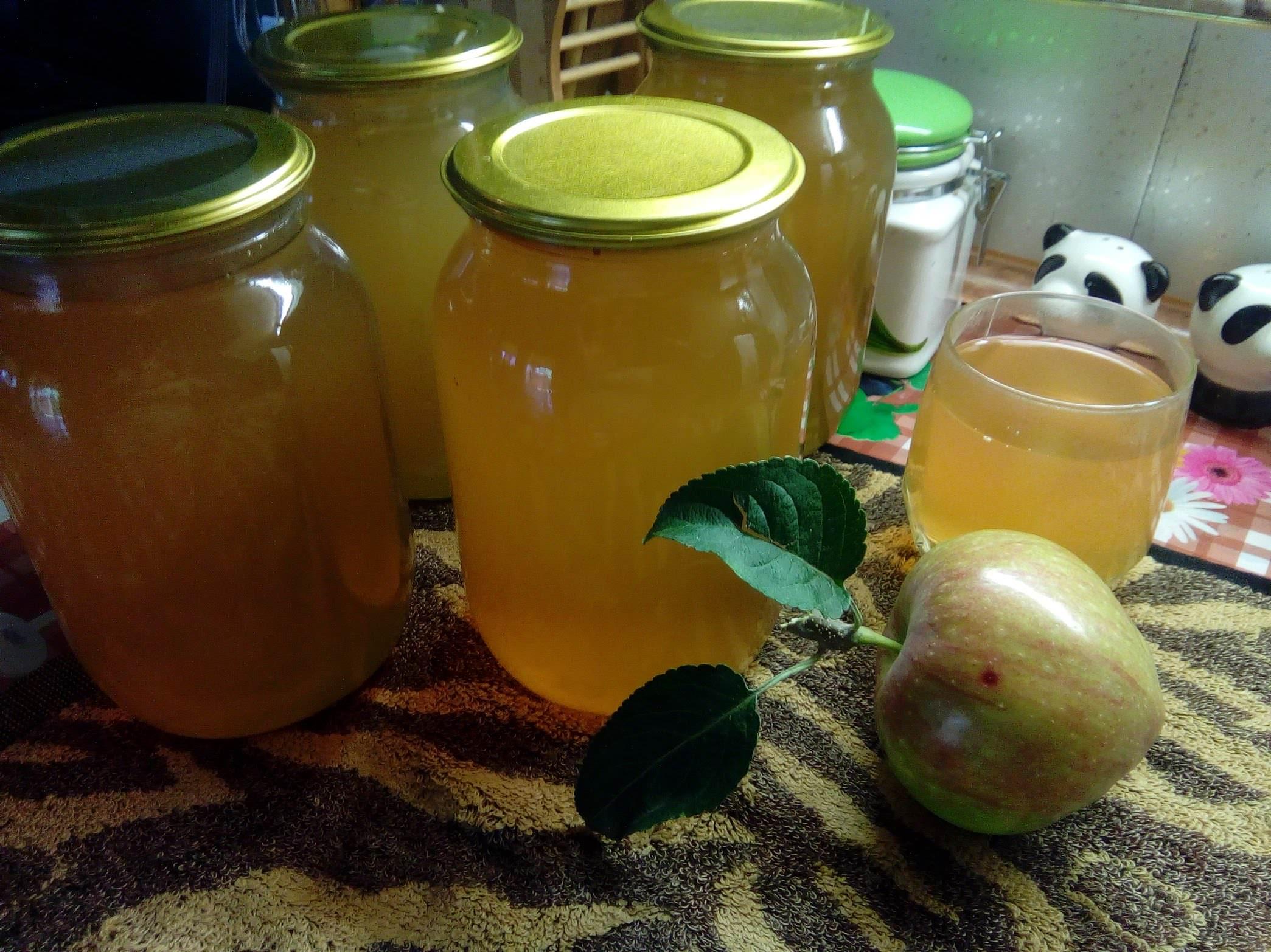 Закатка (консервация) березового сока в домашних условиях: рецепты как закатать с лимоном и апельсином, с лимонной кислотой