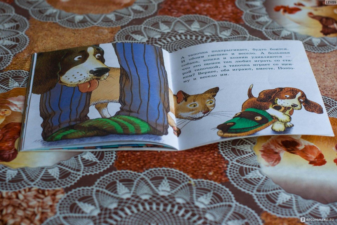 Рассказ сова - виталий бианки. читать онлайн