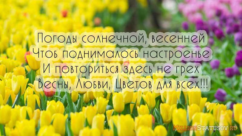 Короткие поздравления с первым днем весны в стихах для смс
