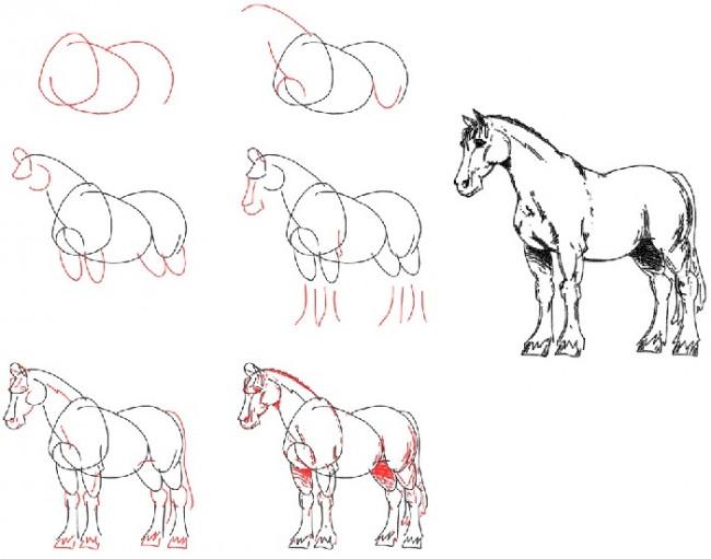 Как нарисовать лошадь: поэтапно, карандашом, как легко нарисовать лошадь.