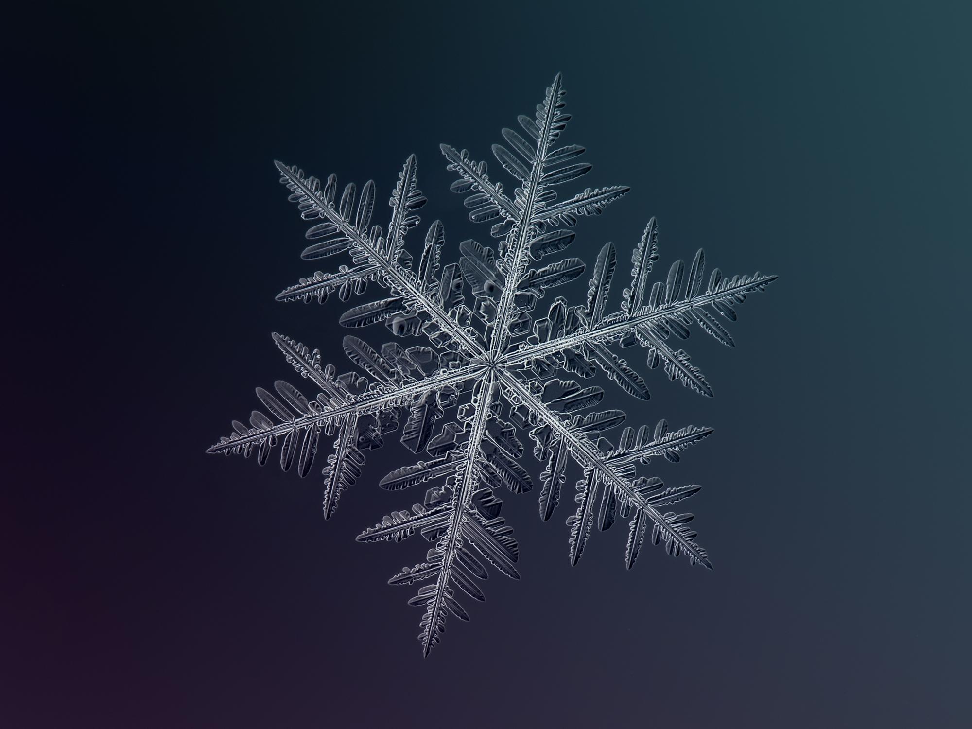 Значение символа снежинки — eta-dzeta.ru