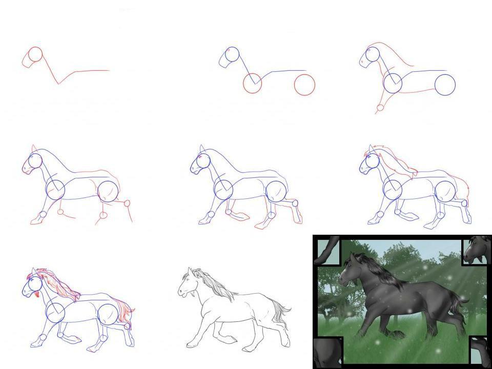 Как нарисовать лошадь поэтапно карандашом. топ вариантов для начинающих