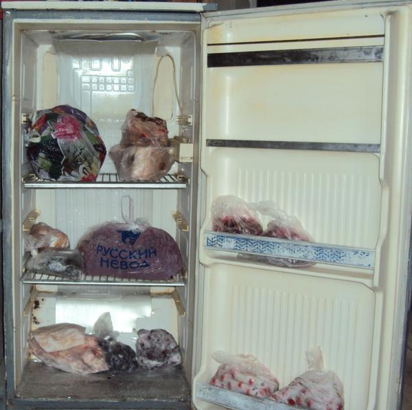 Как сделать холодильник своими руками: принцип работы, выбор материалов
