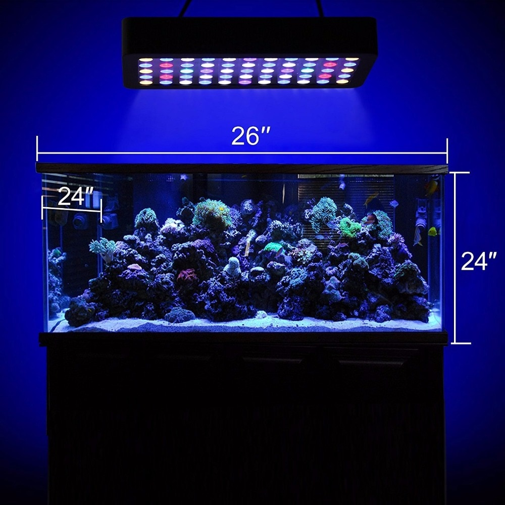 Как подобрать освещение для аквариума: виды ламп, светильники