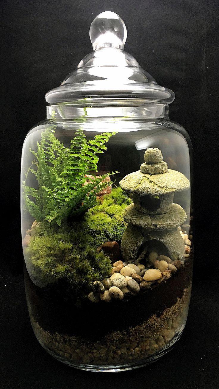 Изготовление флорариумов как бизнес: как сделать флорариум своими руками, какие купить растения, вазу, емкость