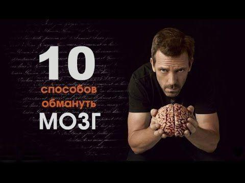 Нейробиолог рассказал о 10 способах, как обмануть мозг, заставив его быть продуктивнее