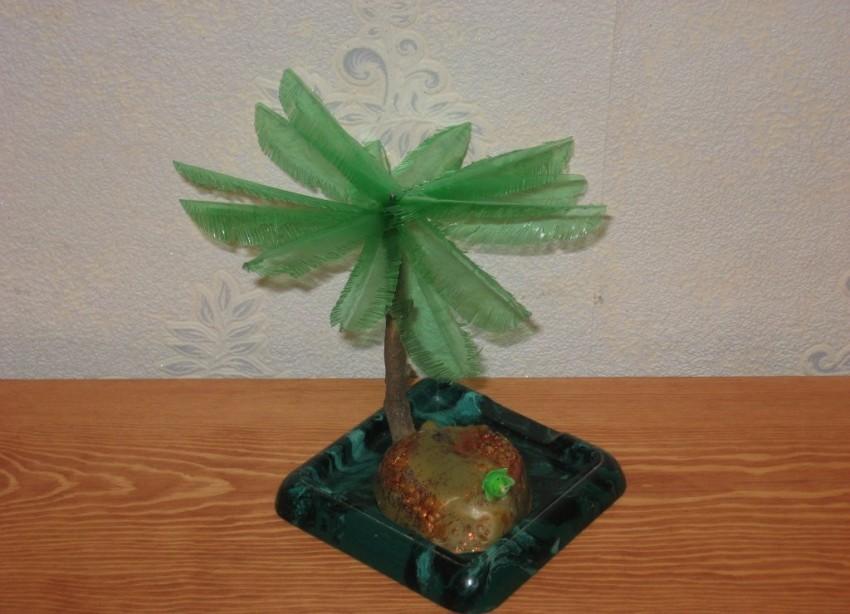 Пальма из бутылок: мастер-класс изготовления пальм различных форм и размеров