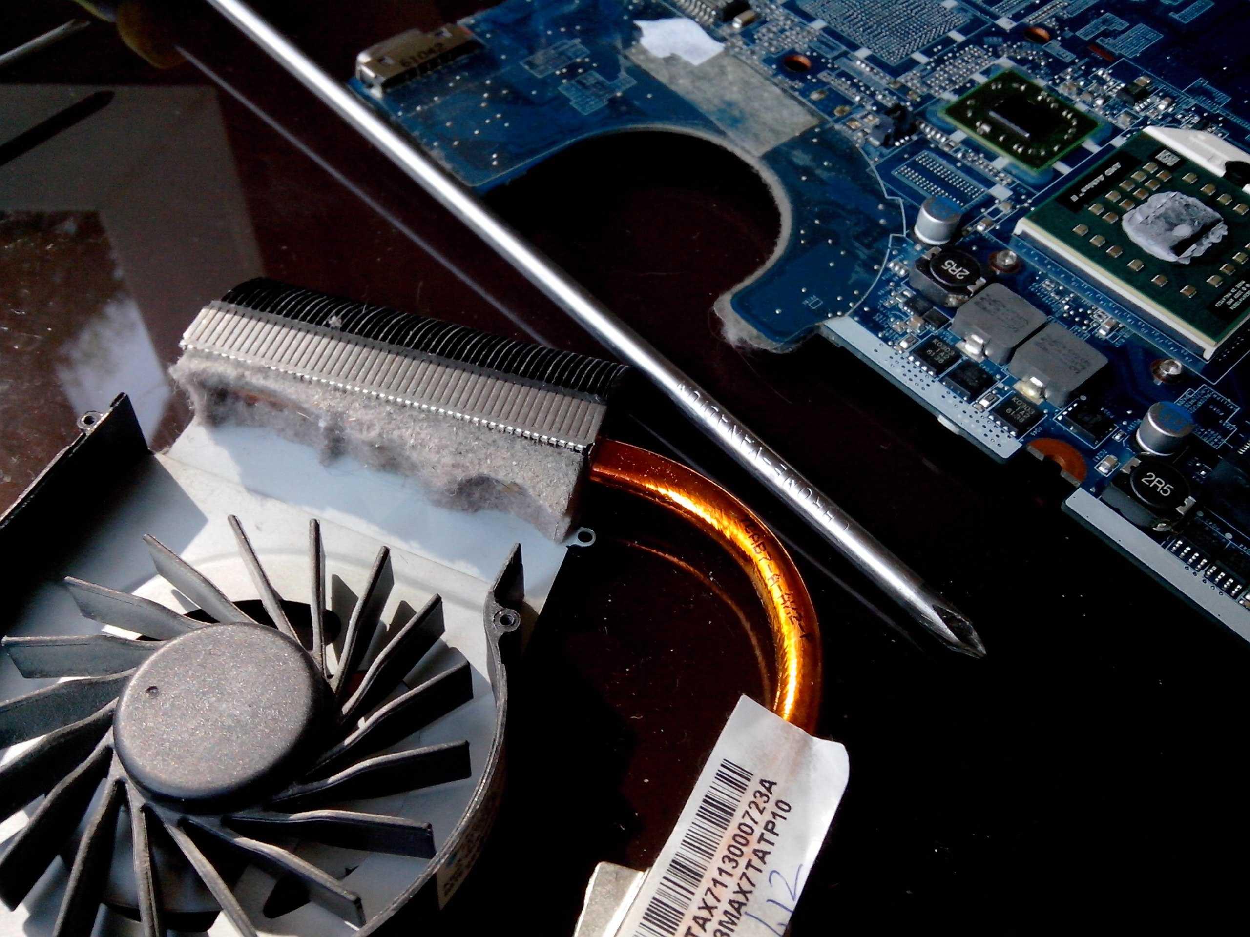 Как почистить вентилятор в ноутбуке своими руками: периодичность чистки, меры предосторожности