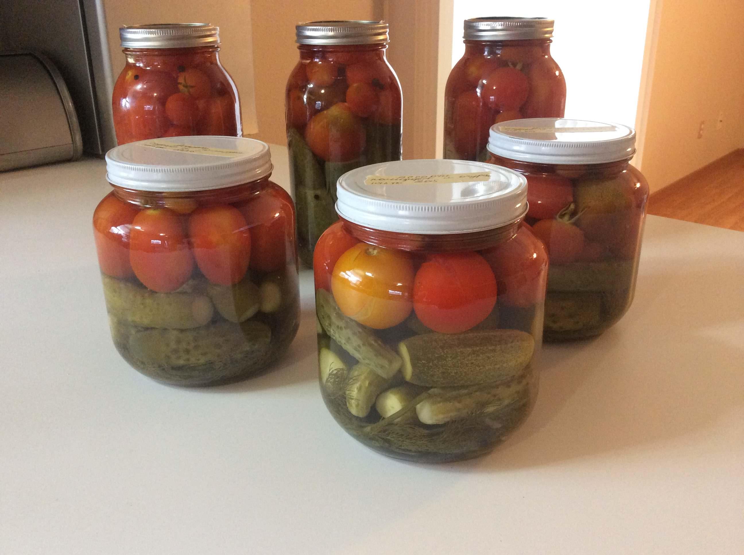 Как сделать огурцы в томате на зиму - 4 вкусных домашних рецепта