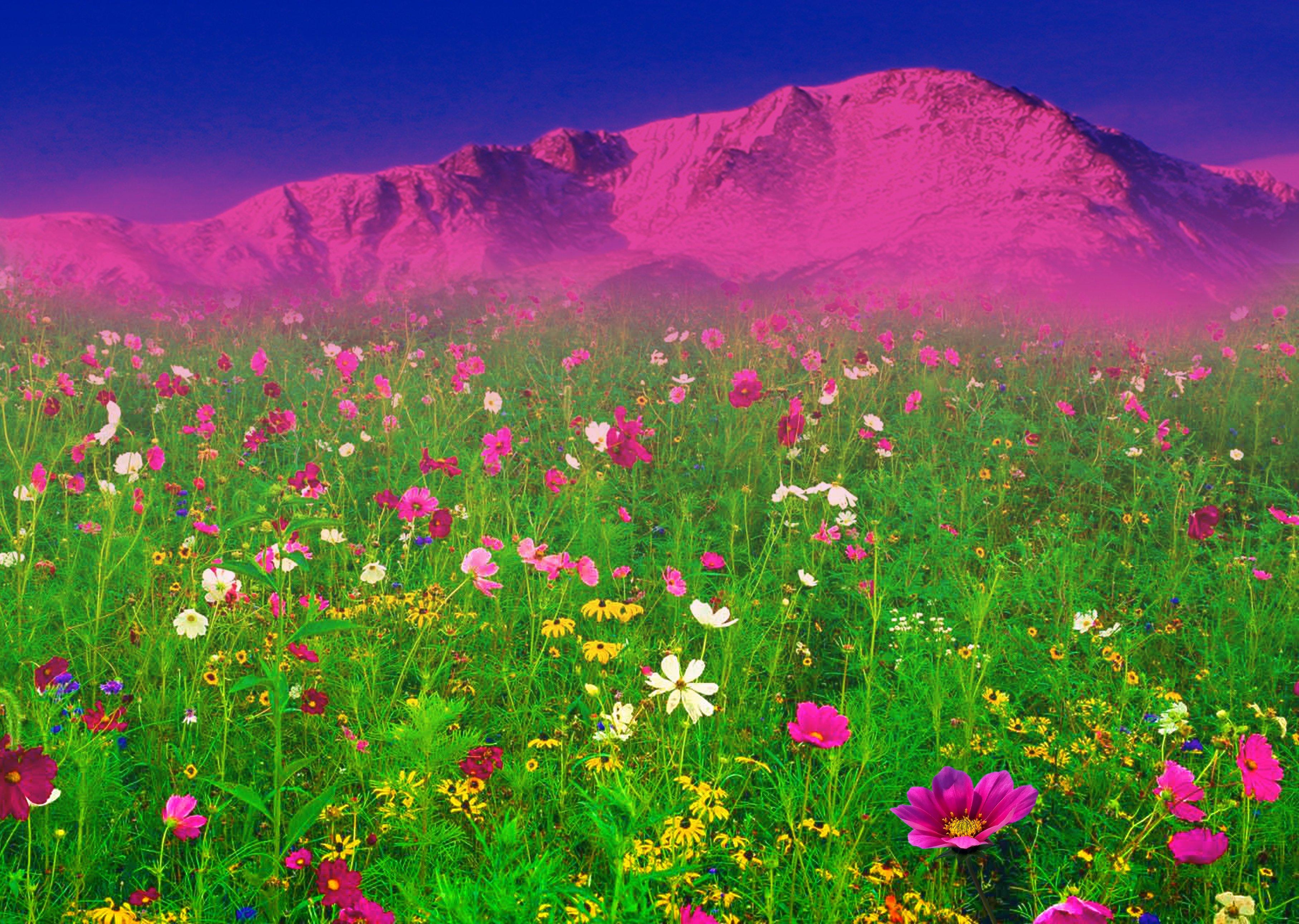 Конспект нод по аппликации «цветочная поляна» для детей второй младшей группы