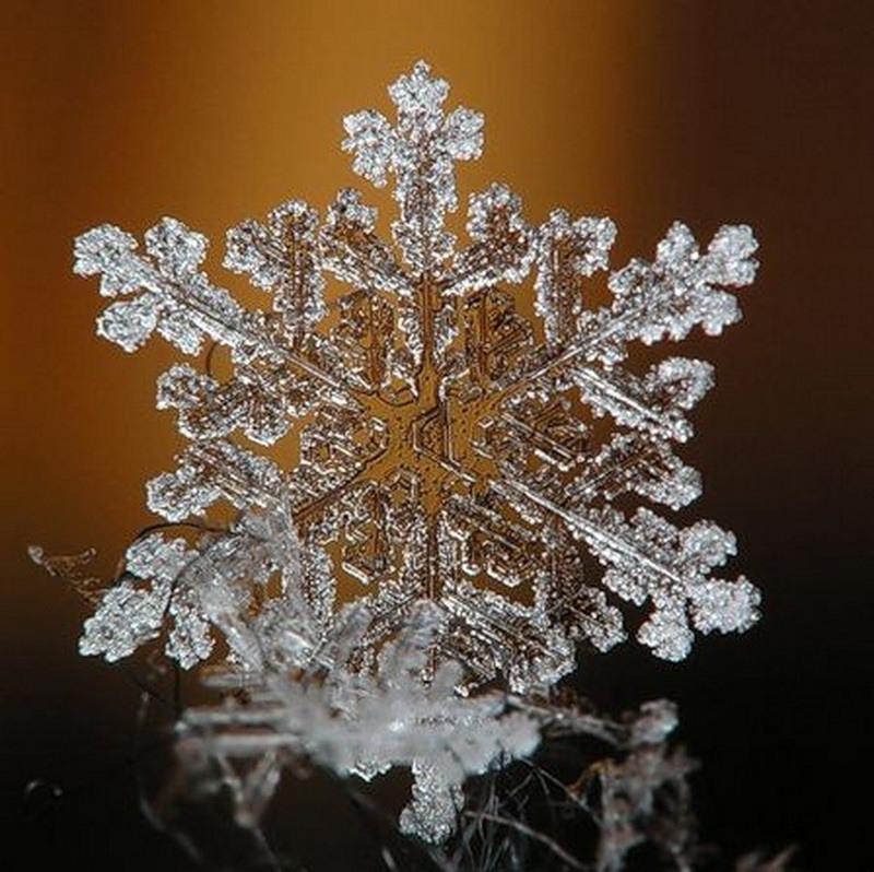 Мастер-класс поделка изделие новый год вырезание снежинки бумага