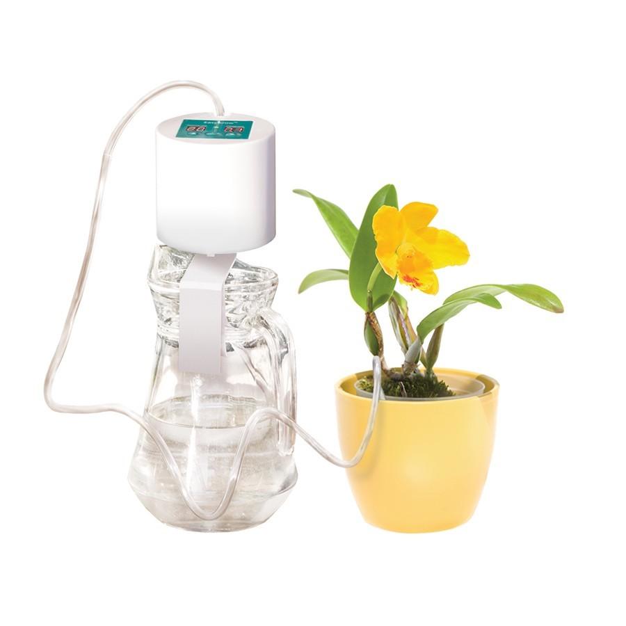 Автоматический полив комнатных растений своими руками - цветочный мир