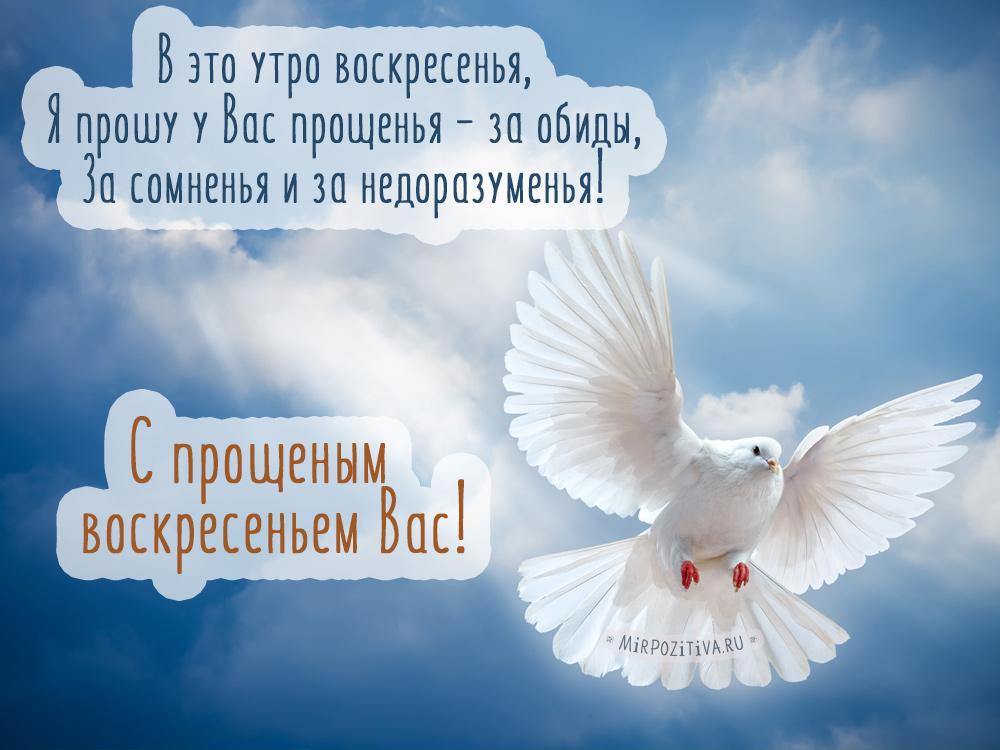 Поздравления на прощенное воскресенье, душевные, красивые, короткие, прикольные, смс, картинки, гифки. прощение в прощенное воскресенье. статья о прошении прощения в прощеное воскресение. поздравления в смс, картинках, стихах, на прощеное воскресение