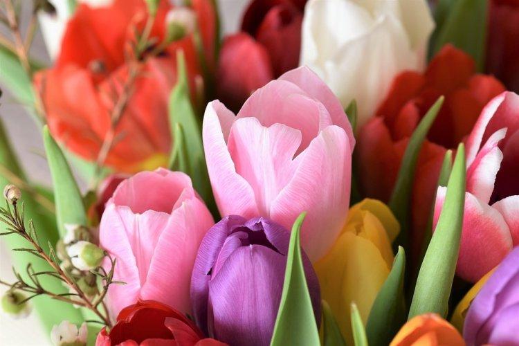 Шуточные и лирические стихотворные поздравления коллег с 8 марта.
