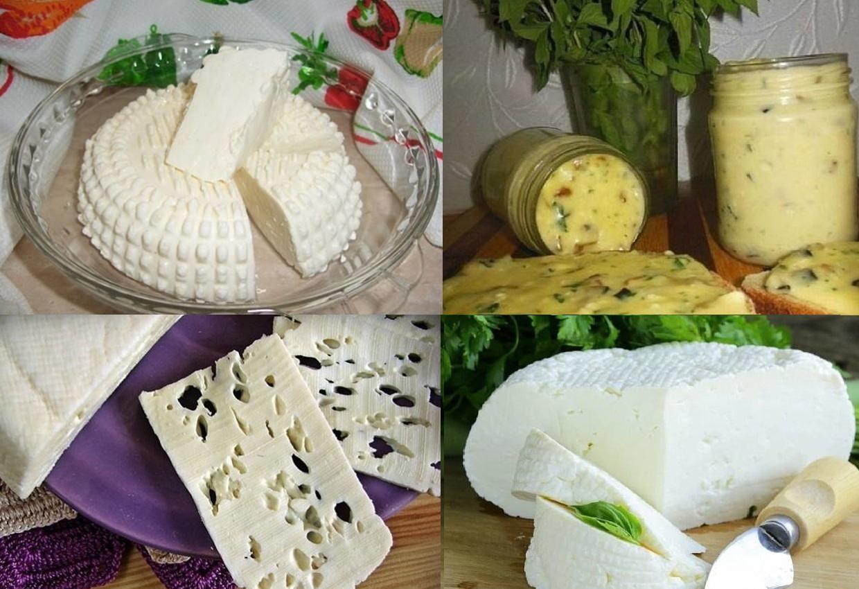 Кухня: как сделать сыр из творога дома.