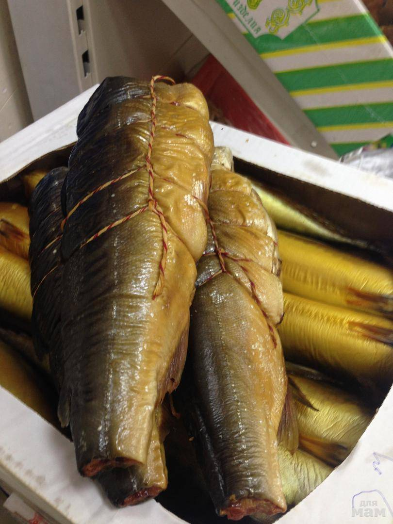 Украшаем рыбную нарезку на праздничный стол — 30 фото с примерами оформления   lisa.ru