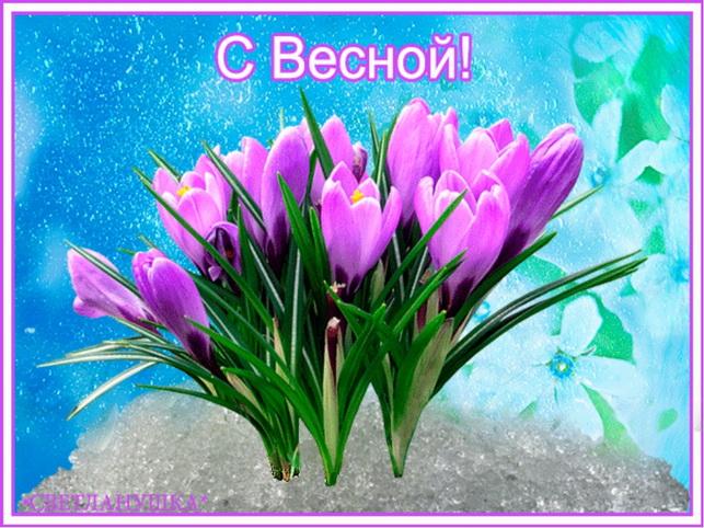 С первым днем весны 1 марта 2020: поздравления, кратинки и открытки с пожеланиями