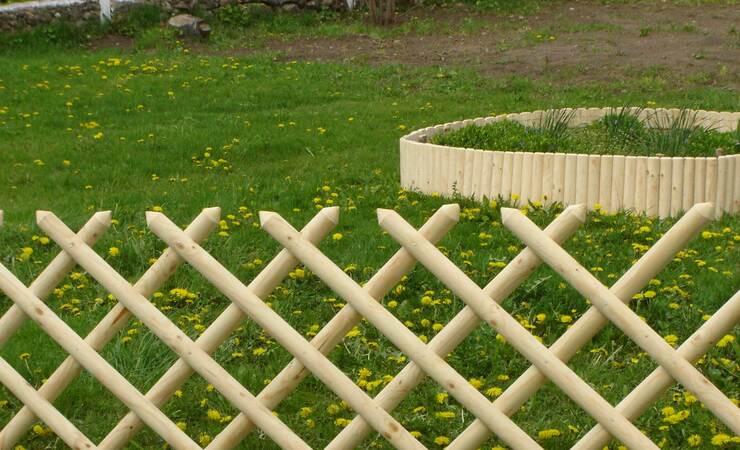11 растений, которые замаскируют неприглядный забор и заметно преобразят участок | дизайн участка (огород.ru)