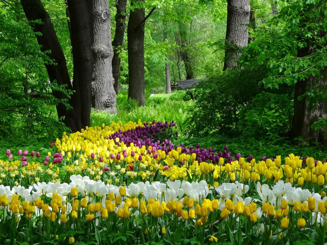 Цветочная полянка | страна мастеров