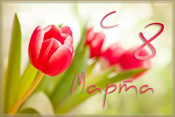 Короткие и красивые поздравления с 8 марта в стихах и прозе