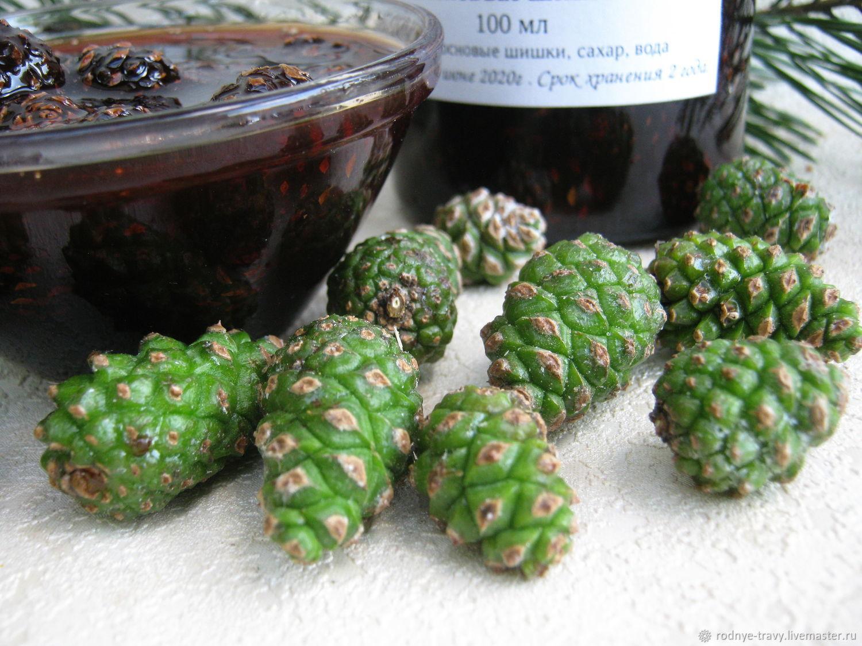 Варенье из сосновых шишек. как сварить и как принимать сосновое варенье