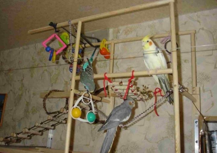 Делаем игрушки фуражилки для попугаев безопасными.