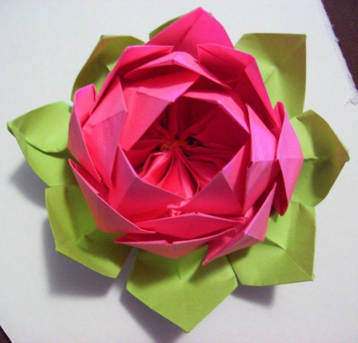 Цветы из гофробумаги: нарцисс и лотос — коробочка идей и мастер-классов