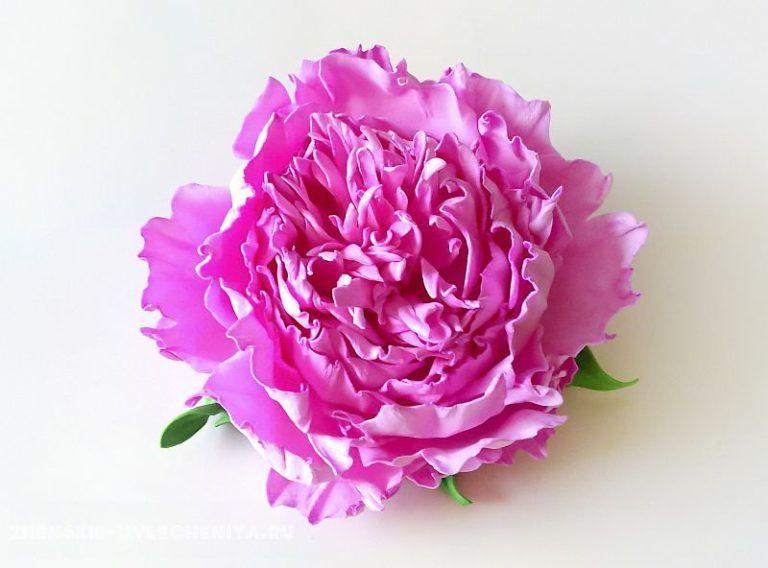 Цветы из фоамирана своими руками: 11 лучших мастер-классов