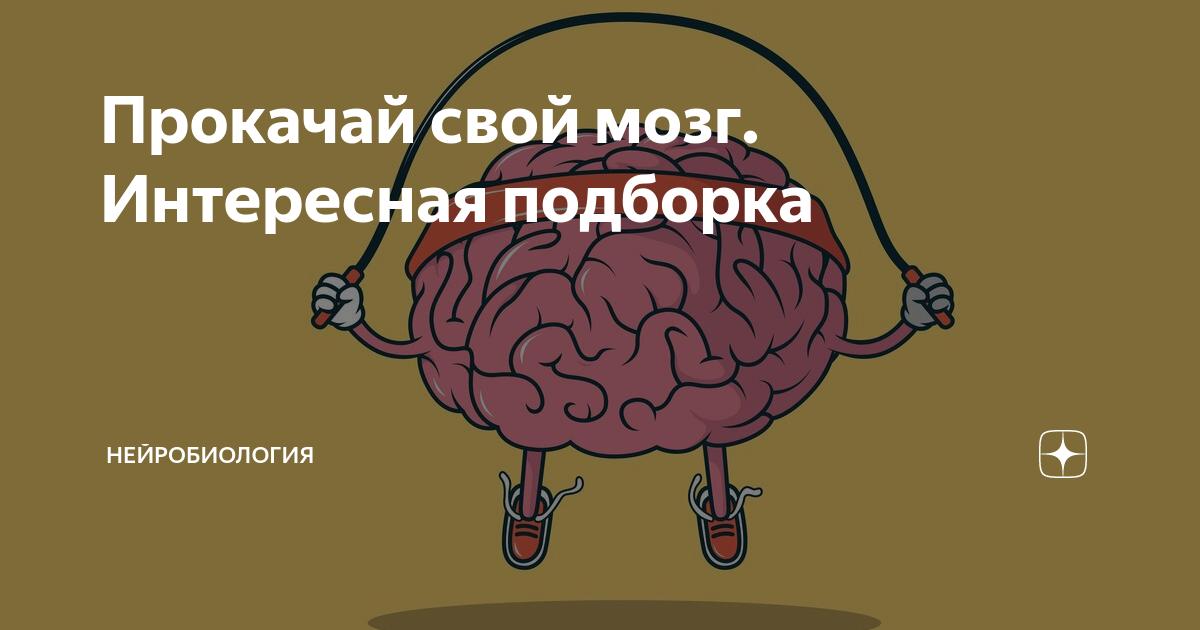 Как мозг обманывает нас каждый день - лайфхакер