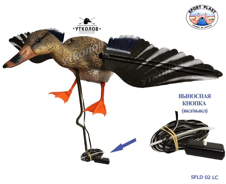 Методы изготовления чучел. моделирование чучела птицы - электронная биологическая библиотека