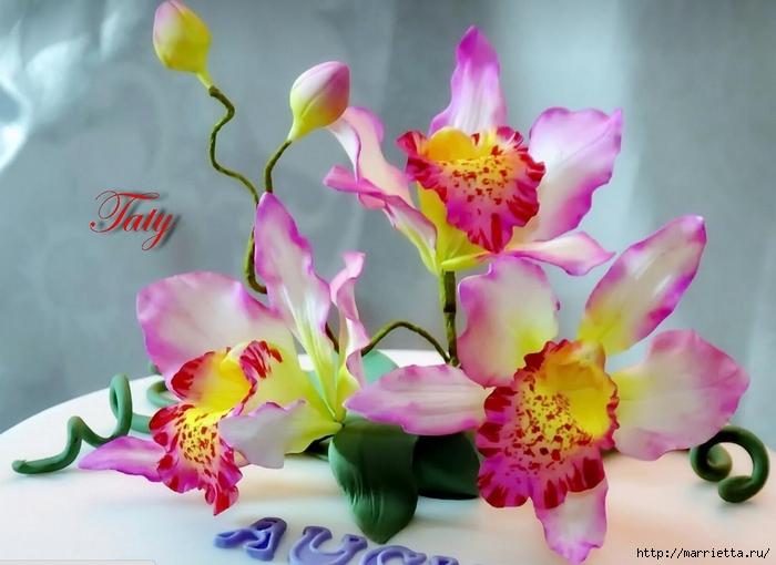 Орхидея фаленопсис из холодного фарфора. мастер- класс. | страна мастеров