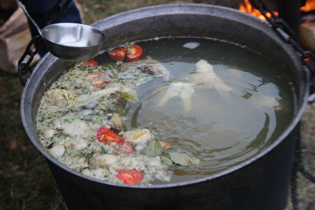 Варись, рыбка. как приготовить вкусную уху на костре | кухня | аиф челябинск