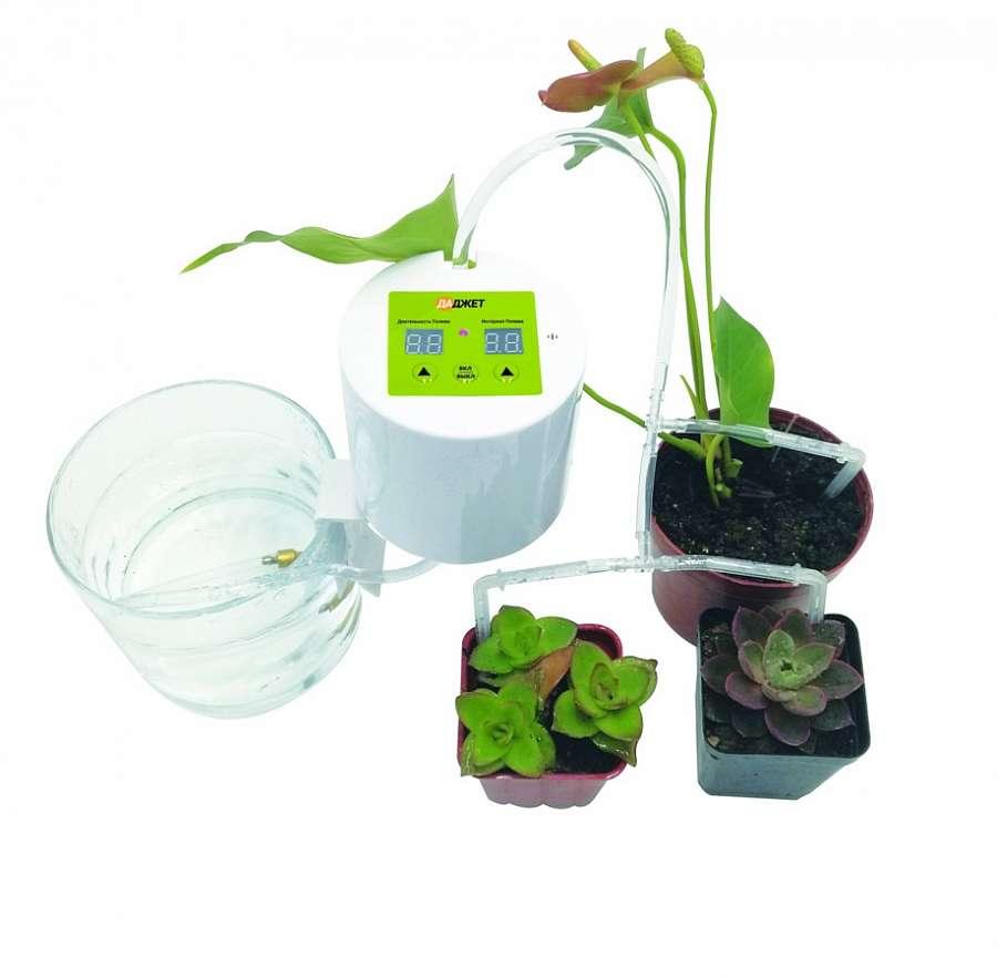 Автополив для комнатных растений: покупная система или сделать своими руками