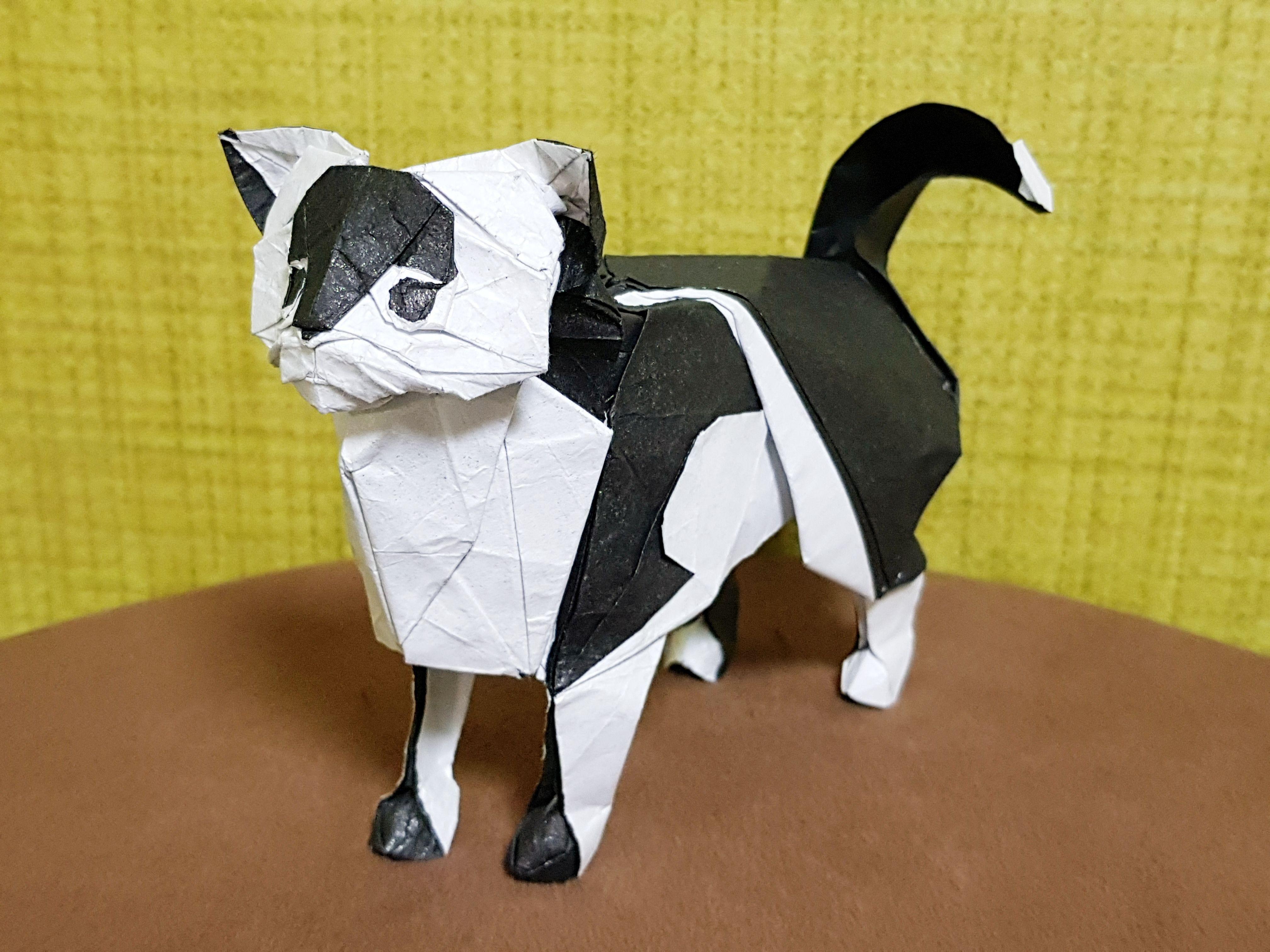 Как сделать из бумаги кошку оригами – как делается бумажная фигурка кота. 110 фото идей и обзор популярных схем