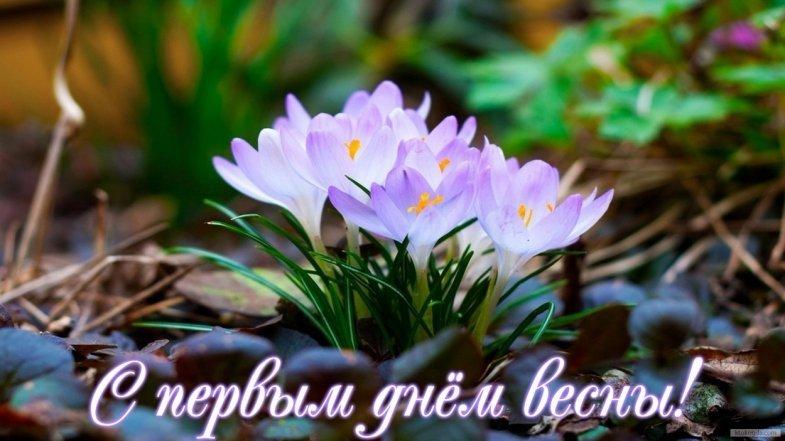Поздравления с первым днем весны | вести