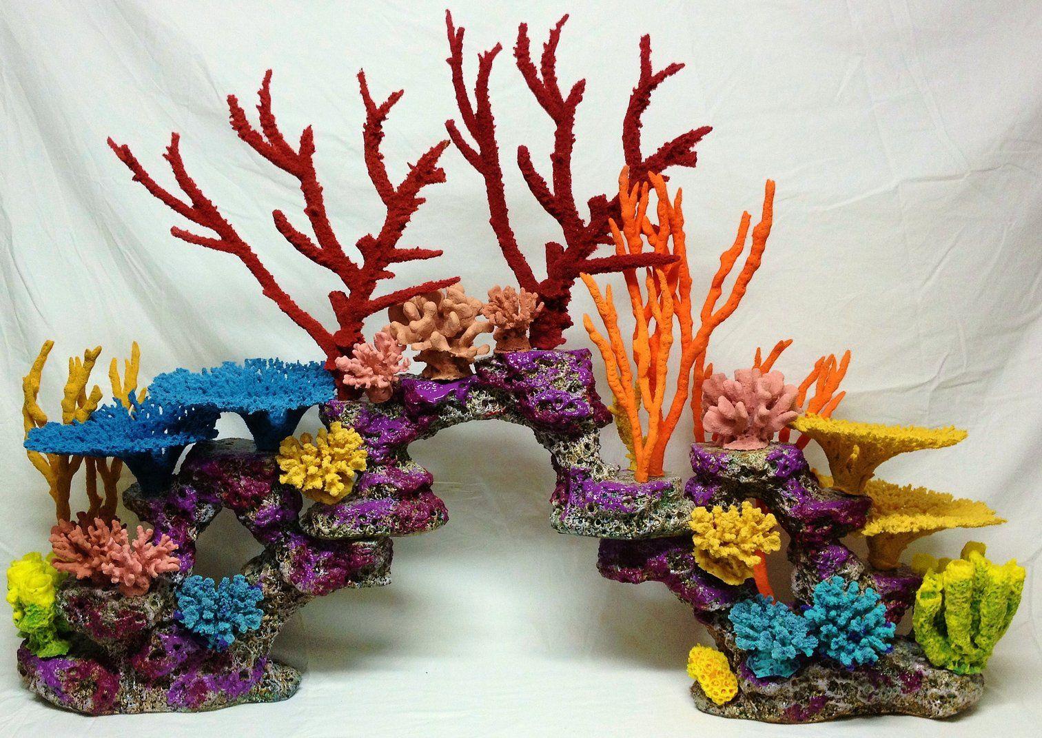 Виды кораллов и их взаимодействие с человеком