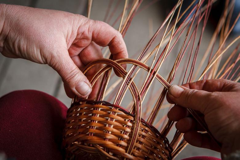 Техника плетения изделий из лозы, заготовка, обработка прута