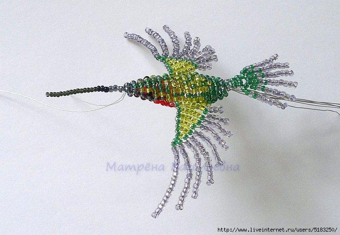 «колибри» средней полосы россии (бабочки — бражники)   экоелец