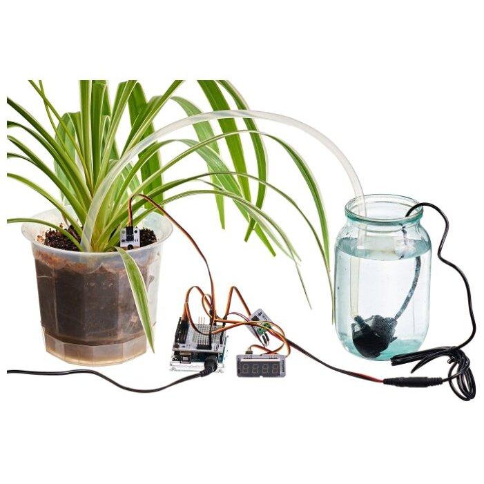 Автополив для комнатных растений своими руками: как изготовить конструкцию