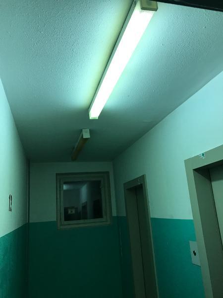 Какие лампочки являются самыми эффективными и экологичными?
