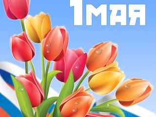 Почему 1 мая выходной? причины, фото и видео