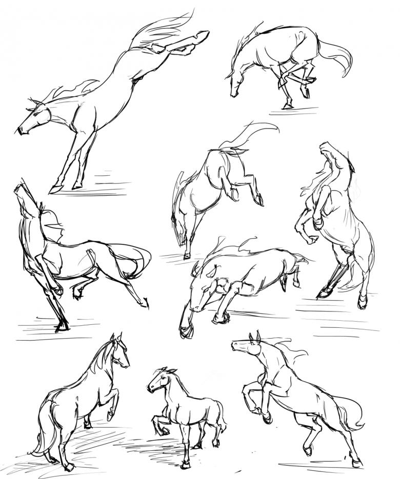 Как нарисовать лошадь поэтапно карандашом - три легких мастер-класса для начинающих