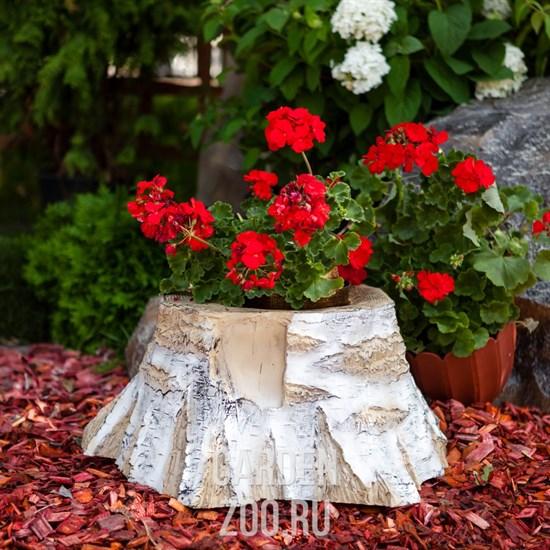 Особенности деревянных кашпо для цветов