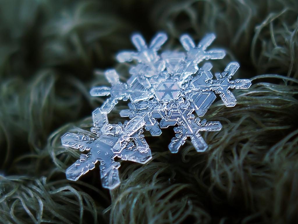 55 схем вырезания снежинок из бумаги за 3 минуты. трафареты и шаблоны на новый год!