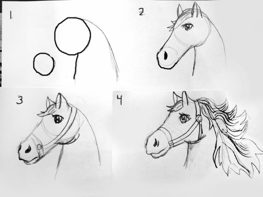 Как легко нарисовать лошадь поэтапно карандашом? фото, видео