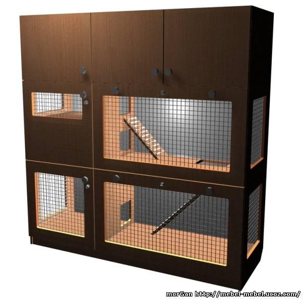 Как построить и обустроить удобный дом для хорька?