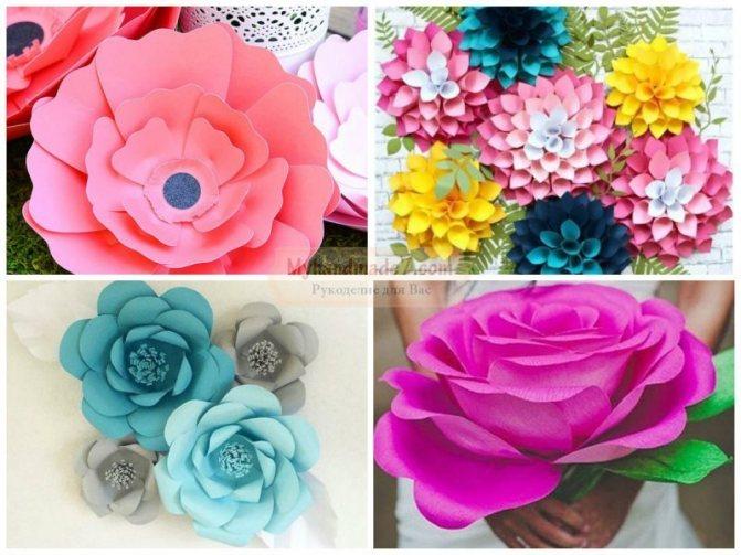 10 самых красивых бумажных цветов своими руками