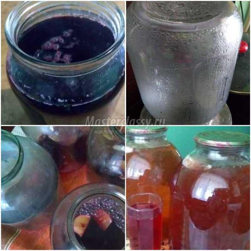 Берёзовый сок— польза, вред, добыча и хранение березового сока